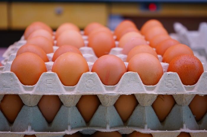 egg-318227_960_720.jpg